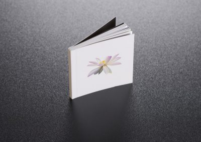 brochure-dos- carre-colle-martinenq-7