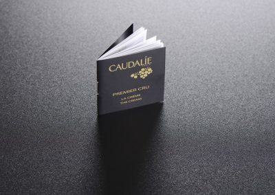 brochure-piqure- métal-martinenq-9